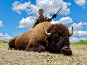buffalo bison hunt