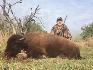 Bison Meat Hunt