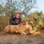 Corsican ram hunt in south texas
