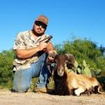 corsican ram hunt texas