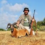 corsican ram hunt in texas