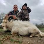 trophy catalina goat ibex hunt