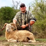 Texas dall ram hunts