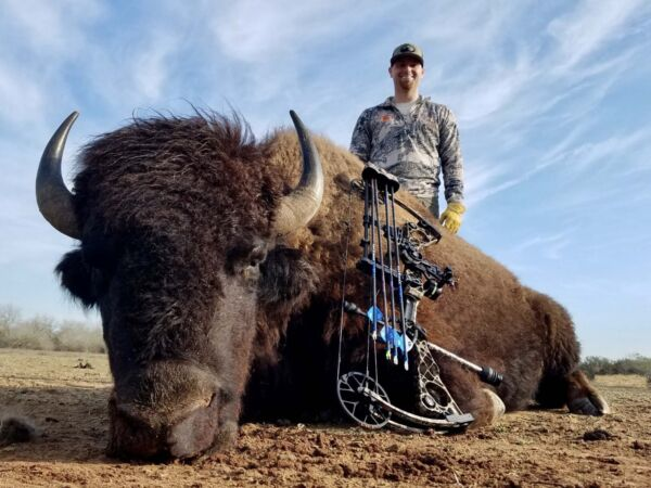 South Texas Buffalo Hunts