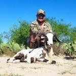 painted desert ram hunt