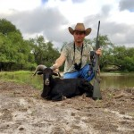black hawaiian ram hunt texas