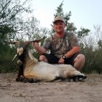 catalina goat hunt texas