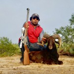 trophy black hawaiian ram hunt
