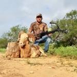 Trophy Texas Dall Ram