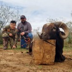 black hawaiian ram hunt in texas