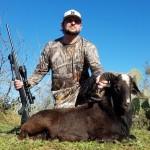 trophy black hawaiian ram hunt in texas