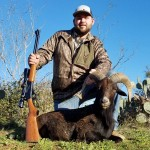 trophy black hawaiian ram hunt in texas