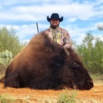Bison meat hunt
