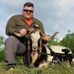 trophy catalina goat hunt in texas