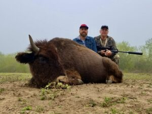 meat bison hunt in south texas